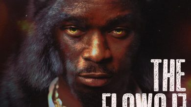 Photo of The Flowolf – My Other Pillow ft. Dremo
