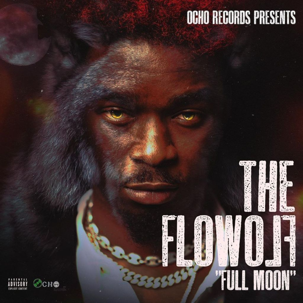 The Flowolf – Questions