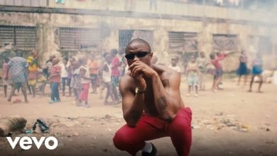 Photo of Vector – License (Video)