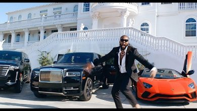 Photo of Flavour – Levels (Video)